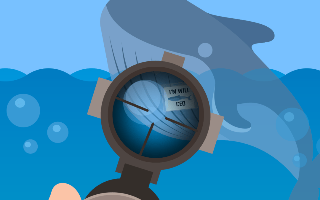 Don't Get Hooked By a Whaling Attack